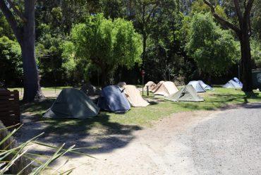 房车营地建设