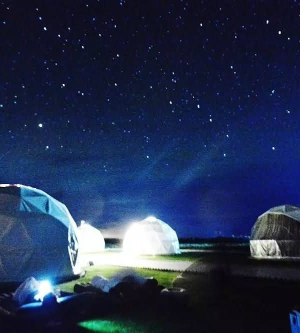 青海大漠红枸杞旅游景区星空帐篷