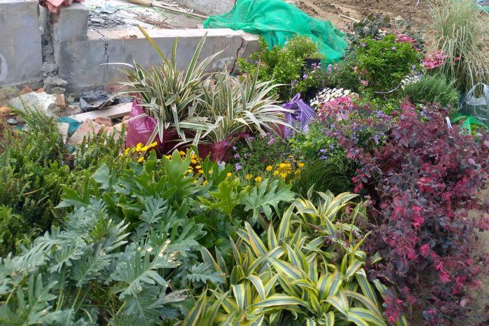 怎样做一个优秀的植物景观工程样板(1.设计沟通)
