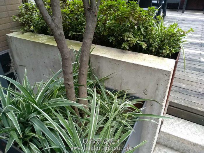四川成都景观工程案例 绿地468商业街