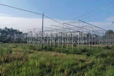 智能大型连栋温室大棚钢结构工程 园艺花卉蔬菜大棚玻璃温室阳光房