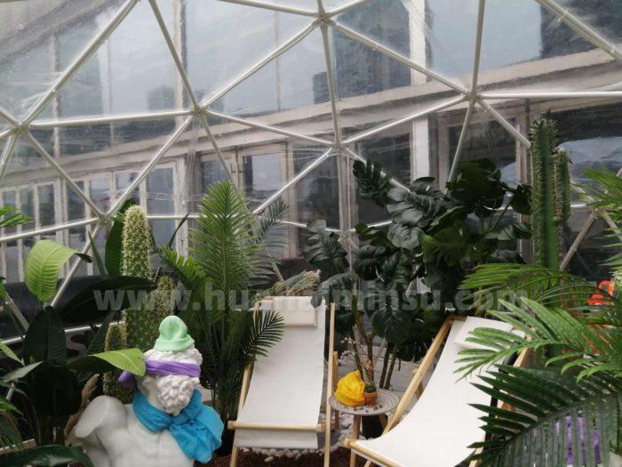 一起来看泡泡屋星空房做的小温室,营造冬天里的一抹阳光