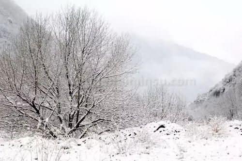 高山雪景的诱惑,孟屯河谷帐篷营地众筹